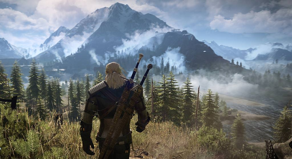 The Witcher 3 (14)