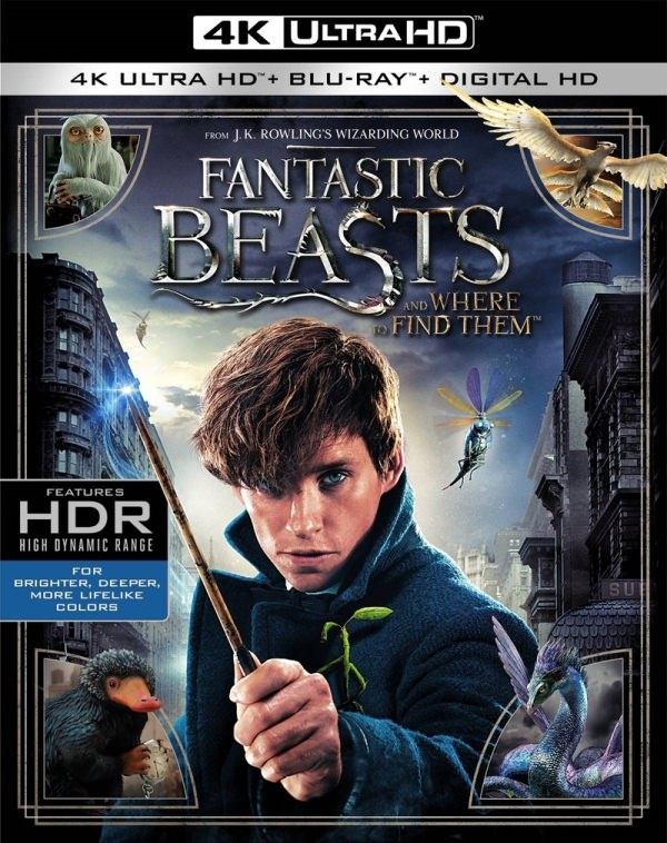 Fantastic Beasts and Where to Find Them Blu-ray/DVD and digital