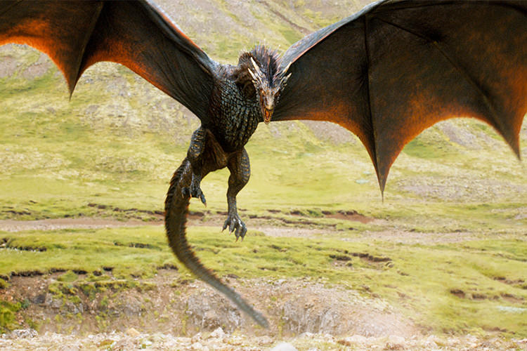 Drogon in Game Of Thrones Season 6
