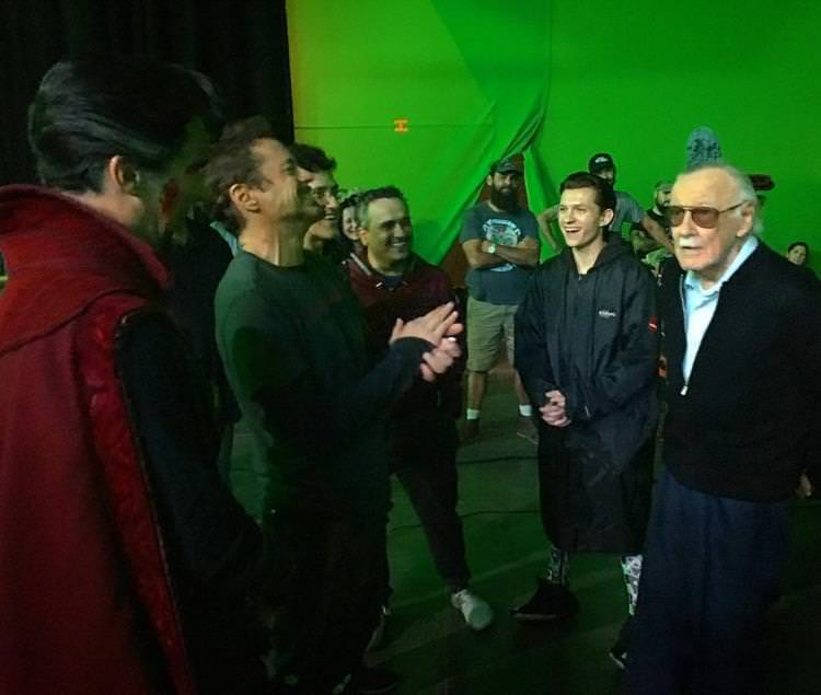 Stan Lee in Avengers: Infinity War