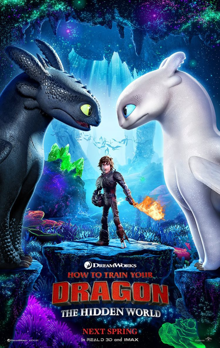 How to Train Your Dragon: The Hidden World Read more at http://www.comingsoon.net/movies/news/949427-first-how-to-train-your-dragon-the-hidden-world-poster-debuts#i3VCrgX7ZtzSd7qU.99 Poster