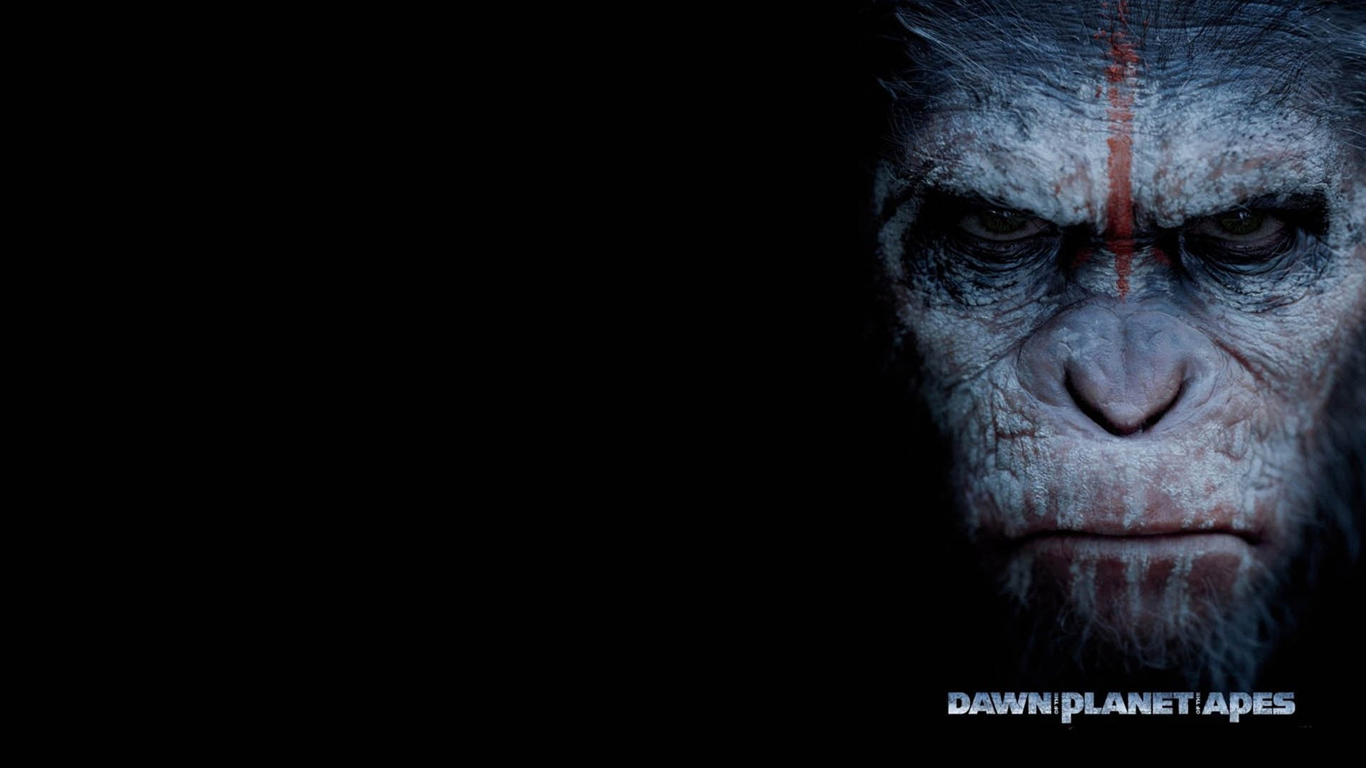 کاور فیلم dawn of the planet of the apes