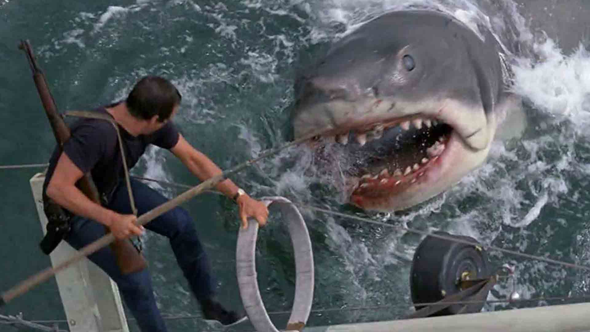 Shark hunter escaping from a shark in the movie Jaws