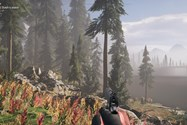 Far Cry 5 LOW Video Setting
