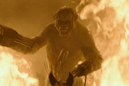 Dawn of the planet of the apes (12)