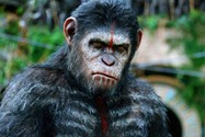 Dawn of the planet of the apes (8)