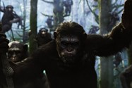 Dawn of the planet of the apes (9)