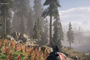 Far Cry 5 HIGH Video Setting
